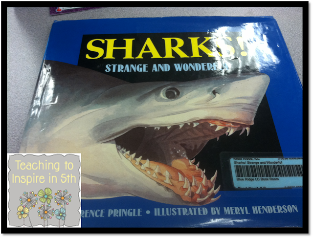 Teaching Main Idea of Nonfiction Text *3 Different Ways*