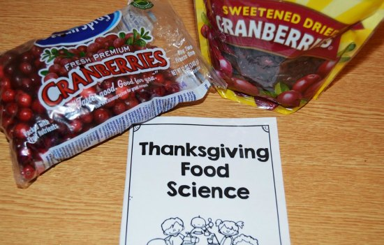 Thanksgiving Science Activity with FREE Printables!
