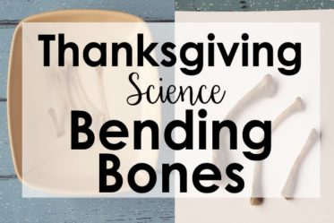 Engage your students this Thanksgiving with a bending bones experiment with turkey bones (or chicken). FREE science reading activity and directions for this Thanksgiving science activity on the post.