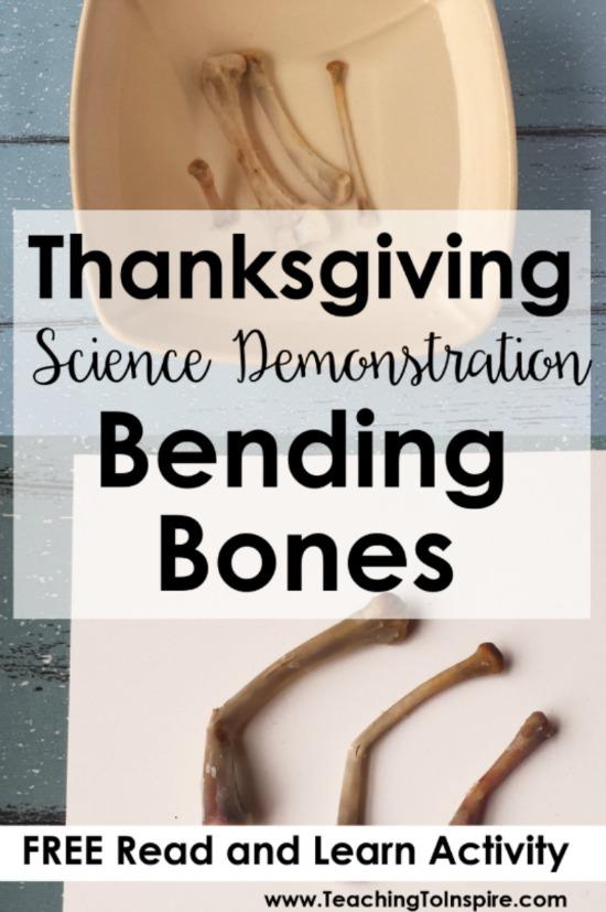 thanksgiving science activity bending bones. Black Bedroom Furniture Sets. Home Design Ideas