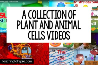 Using videos to explain science concepts and topics is a great way to reinforce what you are teaching and mix up your instruction. This post will share a collection of videos for teaching plant and animal cells.